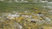 Closeup view of beautiful mountain river in summer day, Black Cheremosh, Ukraine. Fast flowing water and rocks