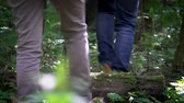пеший турист : Close up of two pairs of legs hikes away in a summer forest.