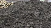 fumier : A heap of cow dung on the farm. The concept of ecological vegetable growing. Vidéos Libres De Droits