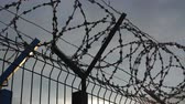 kurum : The barbed wire of the correctional facility on the background of a gloomy cloudy sky. Stok Video