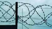 tutuklu : The barbed wire of the correctional facility on the background of a gloomy cloudy sky. Stok Video