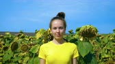 Portrait of a young woman on a sunflower field. In the background blue clear sky. Vídeos