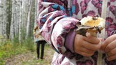 analık : Mom teaches her little daughter to pick mushrooms in the autumn forest. The girl is holding a russula.