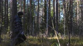 лохматый : Young slim woman walks in the autumn forest with a Airedale Terrier dog. Slow motion. Стоковые видеозаписи