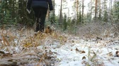 лохматый : Young slim woman walks in the forest with a Airedale Terrier dog. The first snow in the autumn forest lies on the dry grass.
