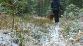 лохматый : Young slim woman runs in the forest with a Airedale Terrier dog. The first snow in the autumn forest lies on the dry grass.