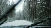 ladin : A car is driving along a snowy forest road in a snowfall. Winter time. View from the front window of the car. Stok Video
