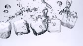 кубик льда : Ice cubes falling in water on white background shooting with high speed camera.