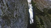 sella : Rocks in siberian forest, Ural close up