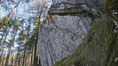 sella : Rocks in siberian forest, Ural