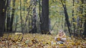 november : Little girl blonde hair seating in the park in yellow leaves and playing