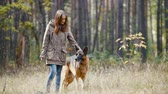 cão de pastor : Girl With her pet - german shepherd - at autumn forest - the dog stuck out his tongue