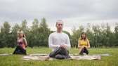 soul searching : Group of sportsmen performs training outdoors in a green park - blonde girl is sleeping during meditation