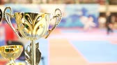 troféu : Golden cup in front of fighting karate at the tournament