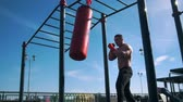 punching bag : Athletic man engaged in boxing with punching bag in summer outdoor
