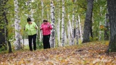скандинавский : Mature women throws leaves on each other during a scandinavian walk