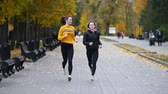 бегун : Young fit women running on sidewalk in autumn park. Running towards the camera