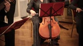 pratica : Chamber orchestra. A woman in long dress playing cello