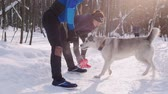 Young man and woman doing exercises in the winter morning park. Warming up. Pretty white husky dog comes to them Стоковые видеозаписи