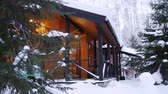 A nice architected wooden house in the forest. Outside view Стоковые видеозаписи