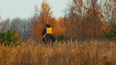 yelek : Two women riding horses in the autumn nature - ride away towards the forest