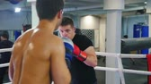 combativo : Boxing in the gym - two men having a training fight