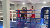 combativo : Boxing training in the gym - two athletic men having a training fight on the boxing ring