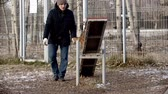 cane pastore : dog training - dog is running on double-sided swing and jumping off Filmati Stock