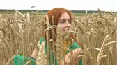ruivo : Walk on the wheat field. Slow motion. A lovely red-haired girl is sitting in a field of ripe wheat.