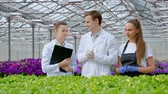 panoya : A young man and two women in white coats and black aprons. Three scientists, biologists or agronomists examine and analyze flowers and green plants in a greenhouse. Write data to the tablet. Selection and care of plants. Stok Video
