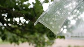 водянистый : Raindrops on a transparent umbrella against the background of green foliage. Summer rain.