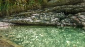 zen like : Rocks lake in forest with clear water 2 Stock Footage