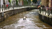 произведение искусства : FREIBURG, GERMANY - JUNE 22: View on the stone Crocodile in the River of the city on June 22, 2017 in Freiburg, Germany.