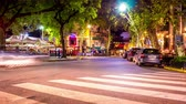 palerme : BUENOS AIRES, ARGENTINA - CIRCA FEBRUARY 2019: Time-lapse view on a street at night in Palermo circa February 2019 in Buenos Aires, Argentina.
