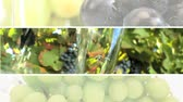 уксус : Montage of vineyards producing wine which is enjoyed as part of a modern healthy eating lifestyle