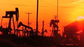 animal : Oil donkeys or pump jacks in perpetual motion at sunset