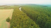 Aerial bird view of rural road between fruitful field on the left and dense forest on the right side. 4K.