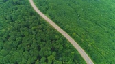 enrolamento : Aerial flight over the car driving along the road surrounded by forest. 4K. Vídeos