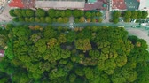 Aerial top view of dense planted town with fast cars moving. 4K.