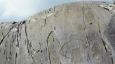 temas animais : Ancient petroglyphs found on the site Kalbak-Tash in the Altai Mountains, Siberia, Russia. Panorama.