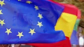 flags of the member states of the european union Stock Footage