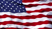 icon : American flag: USA flag waving Stock Footage