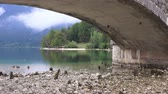 trees : Bohinj lake view from under the bridge. Beautiful glacial lake on a cloudy autumn day. Stock Footage