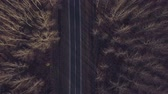 road top view : Aerial view of empty road through deciduous forest, travel and journey concept