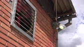 condicionador : Industrial ventilation fan on brick wall Stock Footage