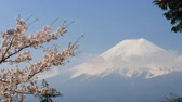 abril : Mt. Fuji with cherry blossom.