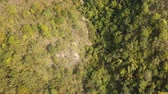 Aerial view of forest in rural landscape Dostupné videozáznamy