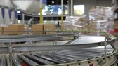 baía : Time Lapse Shot Of Boxes Moving On Conveyor Belt
