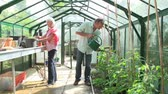 crescente : Time Lapse Shot Of Middle Aged Couple Working In Greenhouse Vídeos
