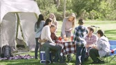 eua : Two Families Enjoying Camping Holiday In Countryside